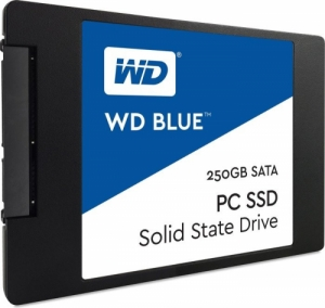 SSD 250GB WD Blue (540MB/s - 500MB/s)